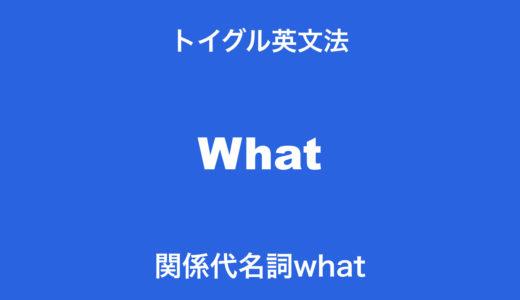 関係代名詞whatの使い方!ポイントは「先行詞を含む関係詞」を理解すること